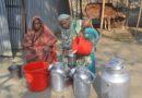 উন্নয়ন সংঘের রি-কল প্রকল্পে গাভী পালন করে বদলে গেছে ফুলমতির জীবন