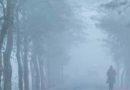 রংপুর বিভাগসহ দেশের কয়েকটি অঞ্চলে শৈত্য প্রবাহ অব্যাহত থাকতে পারে