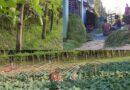 সহসাই দেশের বাজারে যোগ হবে শেরপুরের ৩ লাখ মেট্রিক টন সবজি